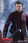 Hot Toys - 1/6 Scale Avengers Age of Ultron - Hawkeye Collectible Figure
