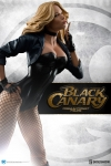 Sideshow - DC Comics Collectibles - Black Canary Premium Format Statue